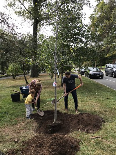 A family planting a legacy tree in Anderson Park
