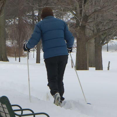 Cross country skiing in the park