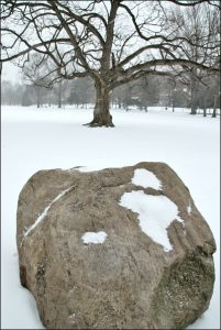 One of Anderson Park's large boulders pictured in a snowy landscape