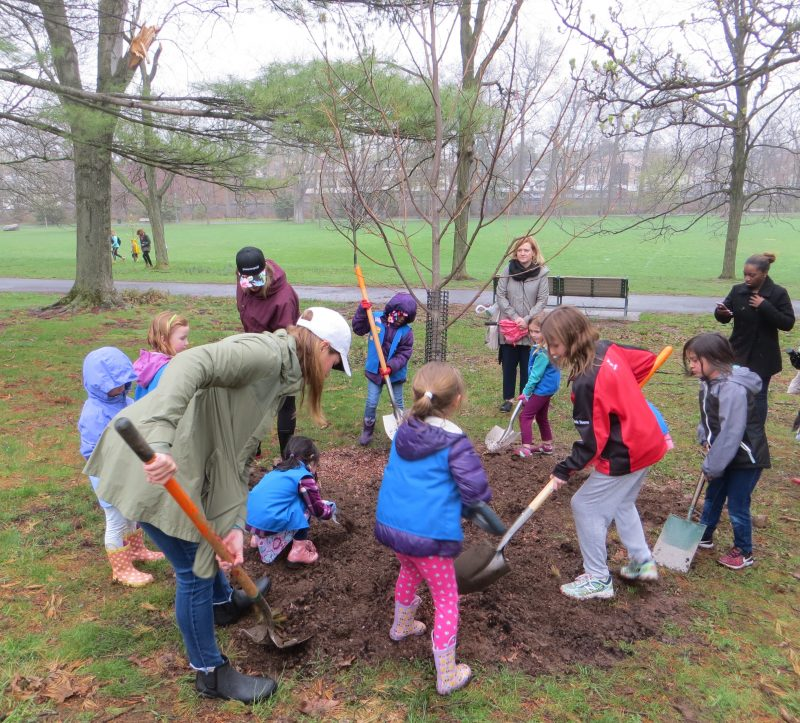 Scouts planting a tree on Arbor Day